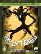 Pits of Paneris [True20]