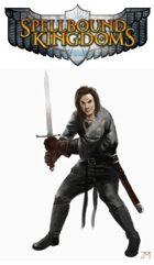 Spellbound Kingdoms Combat Primer