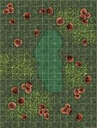 Battlemap: Fungus Jungle