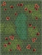 Hexmap: Fungus Jungle