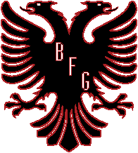 Black Falcon Games LLC
