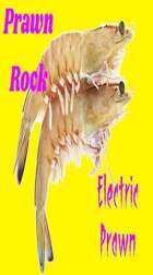 Electric Prawn Blort My Word Is Law mp3 Audio Track