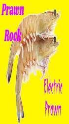 Electric Prawn Sauce mp3 Audio Track