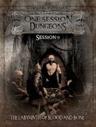 1 Session Dungeons #9 - Labyrinth of Blood and Bone