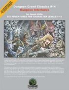 Dungeon Crawl Classics #14: Dungeon Interludes