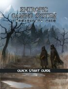 Entropic Gaming System: Quick Start Guide (EGS 2.0)