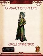 Vathak 5e Character Options - Circle of the Rime Druid