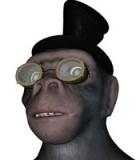 One Finite Monkey