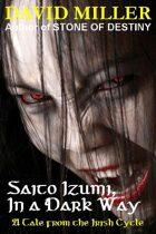 Saito Izumi, In A Dark Way