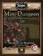 5E Mini-Dungeon #017: Shadows of Madness (Fantasy Grounds)