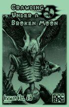 Crawling Under A Broken Moon fanzine issue #13 (DCC)