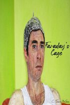 Faraday`s Cage