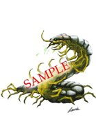 Image- Stock Art- Stock Illustration- Cavernous giant centipede