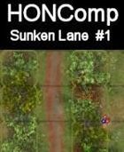 HONComp Sunken Lane #1