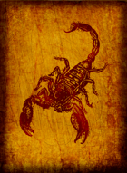 RPS Cards: Scorpion