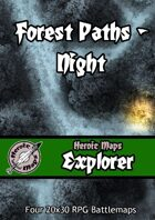 Heroic Maps - Explorer: Forest Paths Night