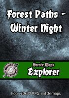 Heroic Maps - Explorer: Forest Paths Winter Night
