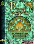 Player Paraphernalia #18 The Elemental Druid