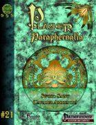 Player Paraphernalia #21 The Sword Saint