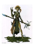 RPG Fantasy Character, Female, Elf Druid