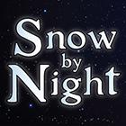 Snow by Night