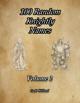 100 Random Knightly Names Volume 2