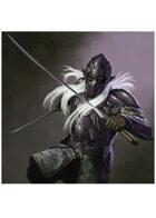 Colour card art - character: dark elf knight - RPG Stock Art