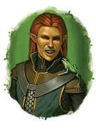 Filler spot colour - character: elf sorcerer with familiar - RPG Stock Art