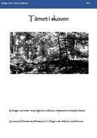 Hinterlandet: Dragens dal - Tårnet i skoven