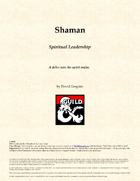 Shaman Class 5e