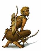 Cat-folk (playable race)