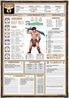 Adventure Master Character Sheet (The Yellow Feather)