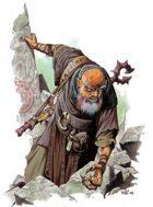 Monk: Way of the Kumite