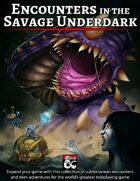 Encounters in the Savage Underdark