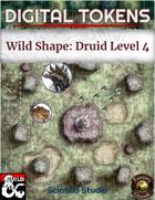 Digital Tokens: Wild Shape, level 4
