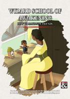 School of Awakening