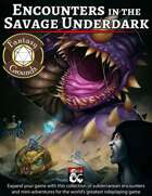 Encounters in the Savage Underdark (Fantasy Grounds)