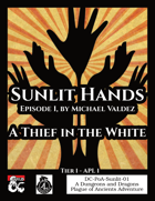 DC-PoA-Sunlit-01: A Thief in the White