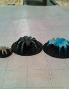 Giant Spider Collection!