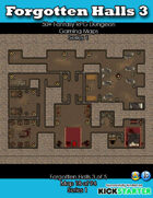 50+ Fantasy RPG Maps 1: (18 of 94) Forgotten Halls 3