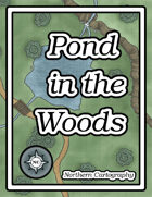Pond in the Woods
