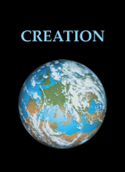 Creation Card Game
