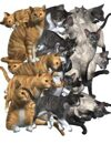 Clipart Character Set 3 - Cat Familiar *Bargain Bin