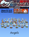 Anitangel Miniatures: Fantasy Creatures: Angels