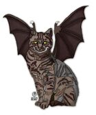Bree Orlock Designs: Winged Cat 1