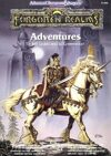 Forgotten Realms Adventures (2e)