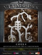 VTT MAP PACK: Caves 4