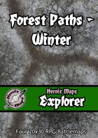 Heroic Maps - Explorer: Forest Paths Winter