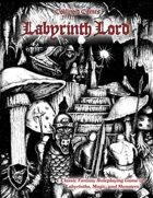 Labyrinth Lord: Revised Edition (no-art version)