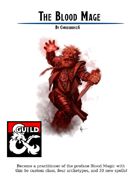 The Blood Mage - An Arcane Intelligence-based caster - Including 4 Archetypes and 39 Custom Spells